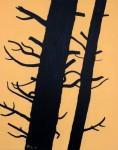 Pinus sylvertris, 40 x 50 cm, 2021