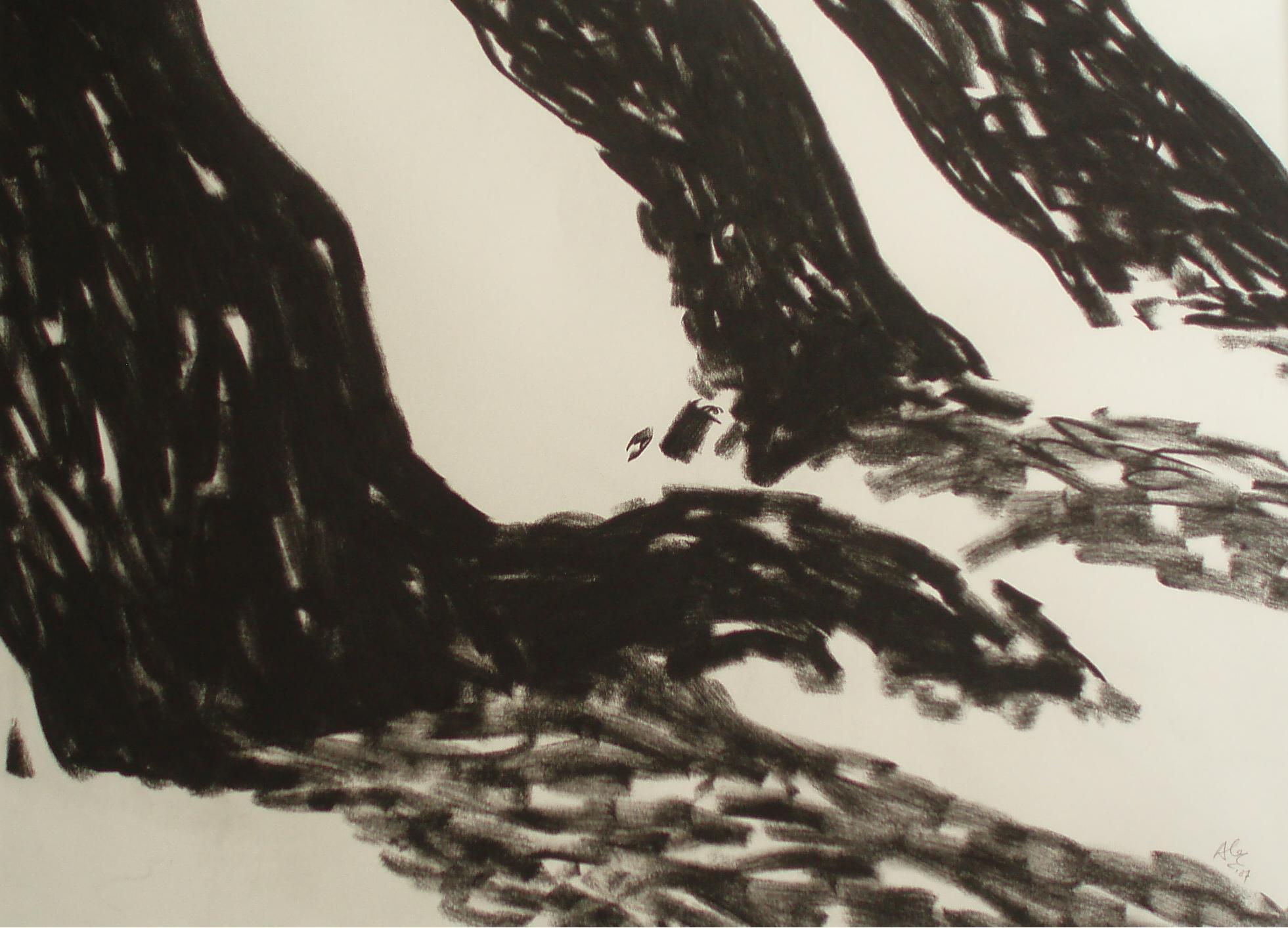 Krijt op papier, 2007
